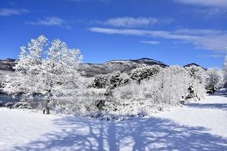snow-1966943_960_720.jpg